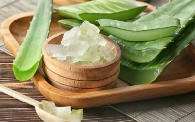 Crema de Aloe vera: ¿cuáles son sus propiedades y beneficios?