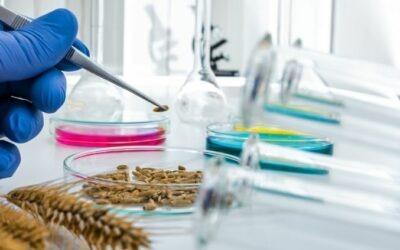 ¿Qué es la bromatología y para qué sirve?