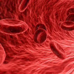 Estudiar curso de hemoterapia